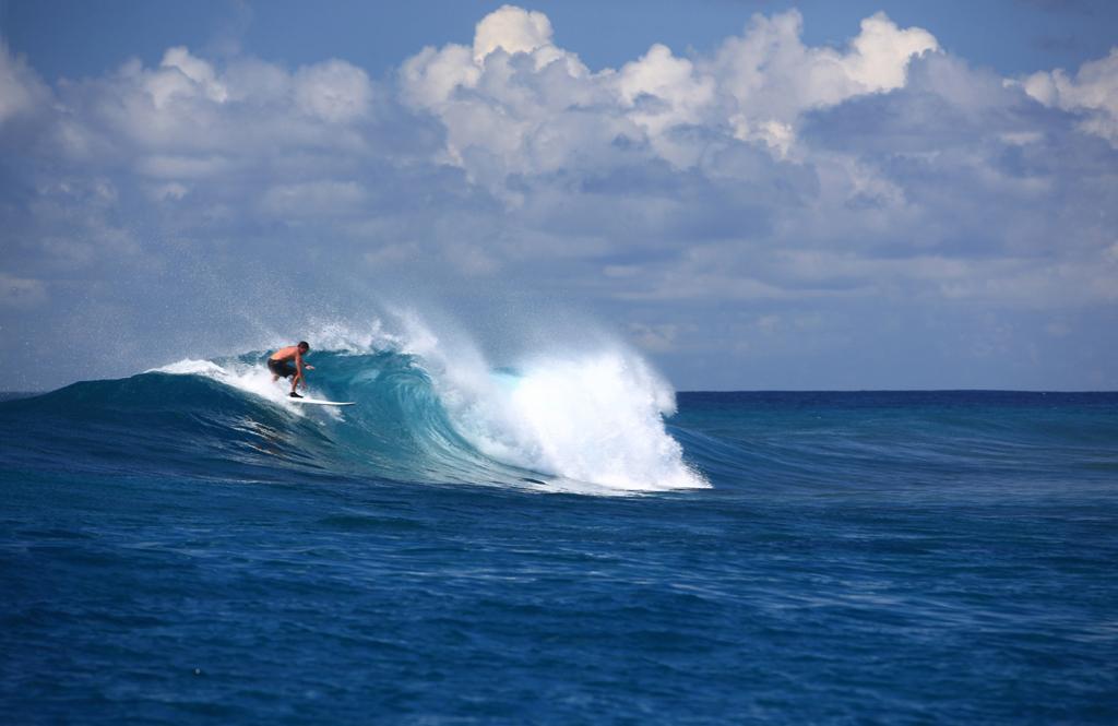 SSLM_Surfing_hires