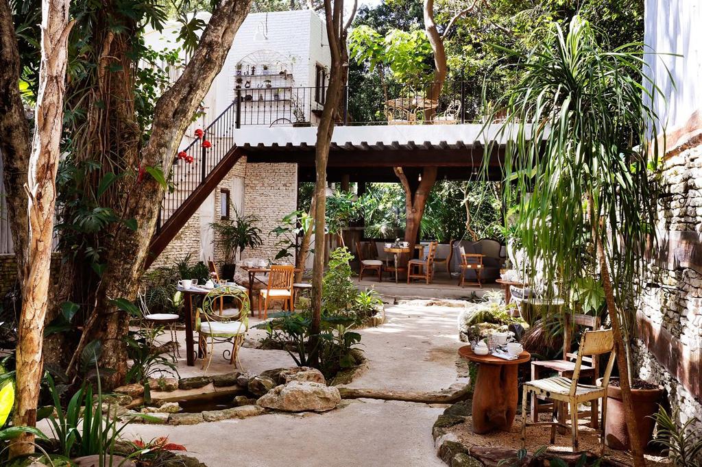 La Semilla Hotel, Playa del Carmen 9