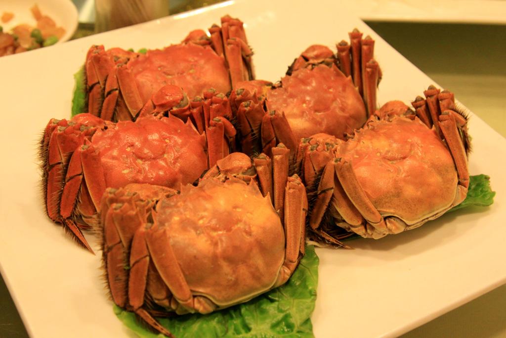 Shanghai_hairy_crab