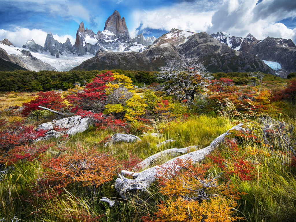 patagonia-argentina-gallery