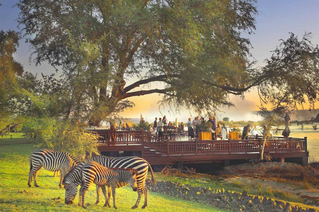 Royal-Livingstone-Sundeck-with-zebras