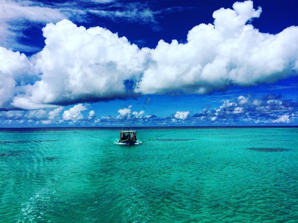 canareef maldives 22