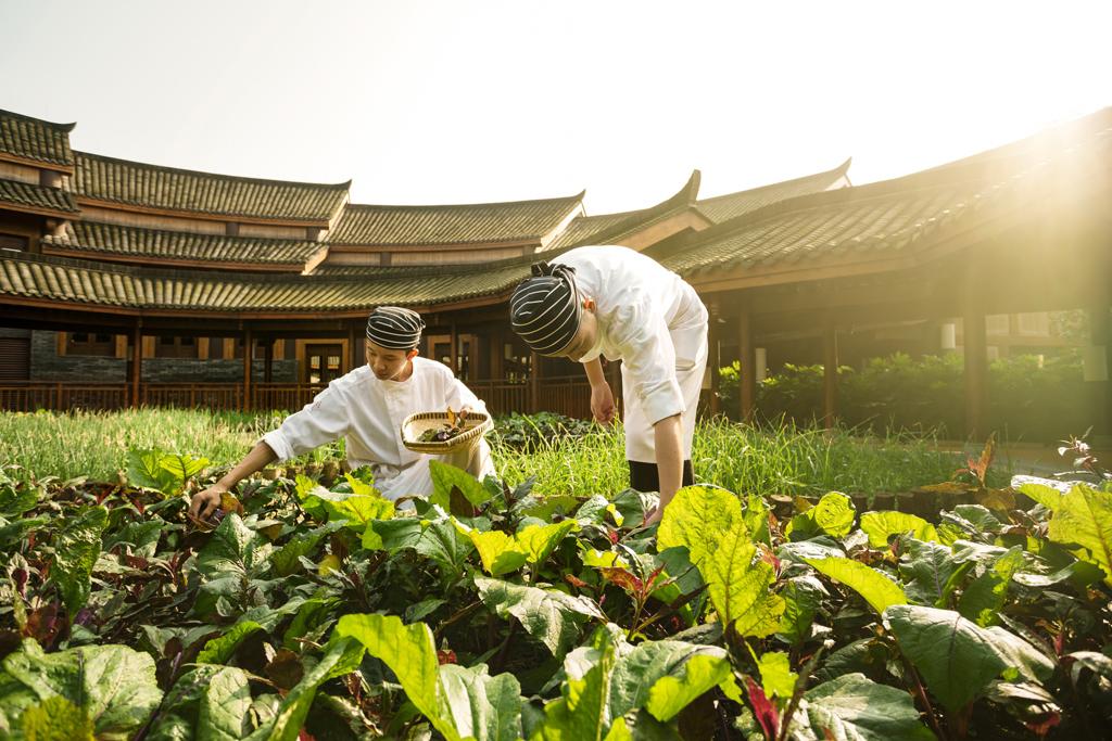 six senses china farmers market